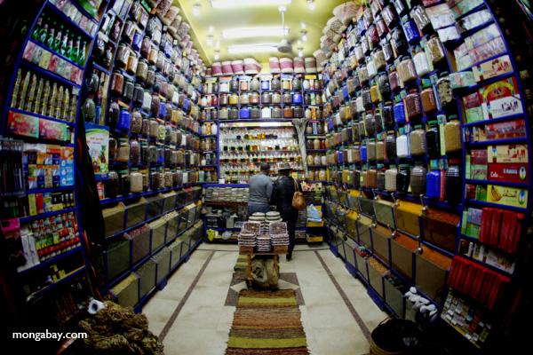 Spice market in Aswan [egypt_0279]