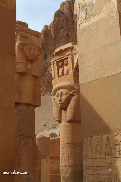 Hatshepsut [egypt_0307]