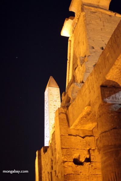 Luxor temple [egypt_0331]