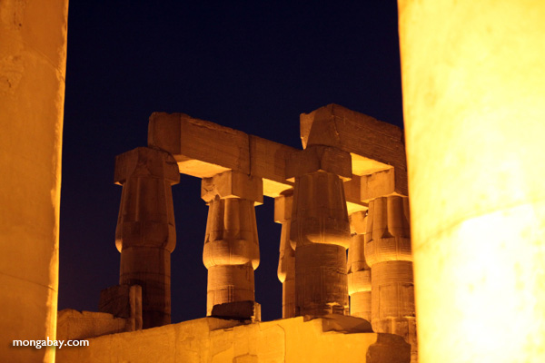 Luxor temple [egypt_0346]