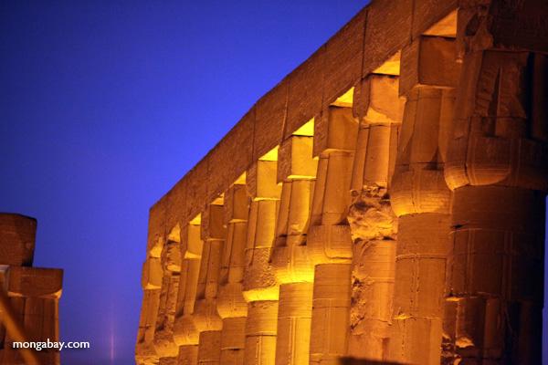 Luxor temple [egypt_0347]