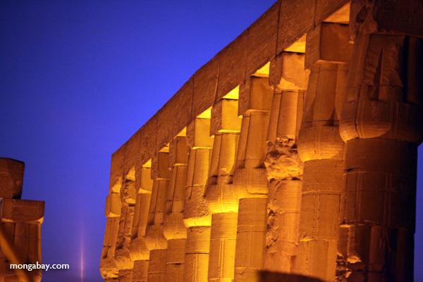 Luxor temple [egypt_0348]