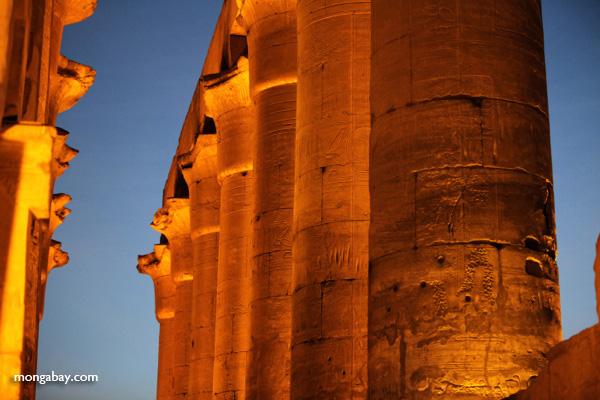 Luxor temple [egypt_0353]