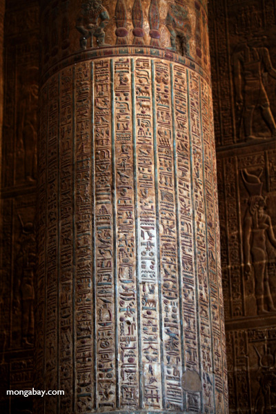Hieroglyphics on columns at Esna