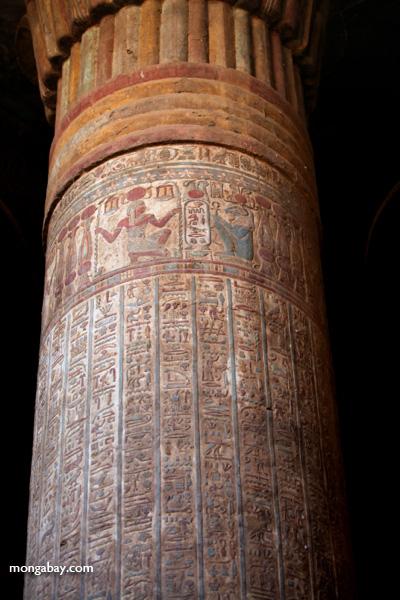 Hieroglyphics on columns at Esna [egypt_0462]