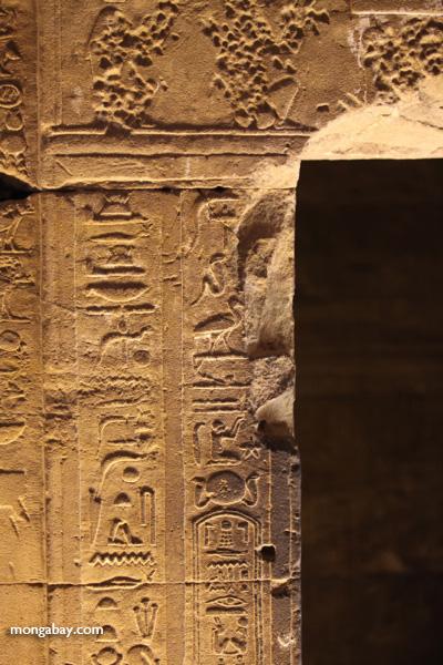 Temple of Kom Ombo [egypt_0478]