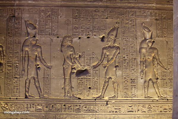 Temple of Kom Ombo [egypt_0480]