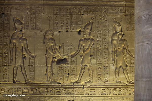 Temple of Kom Ombo [egypt_0482]