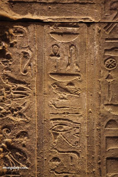 Temple of Kom Ombo [egypt_0485]