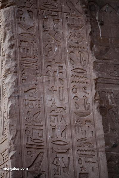 Temple of Kom Ombo [egypt_0487]