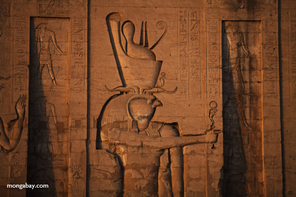 Temple of Kom Ombo [egypt_0489]