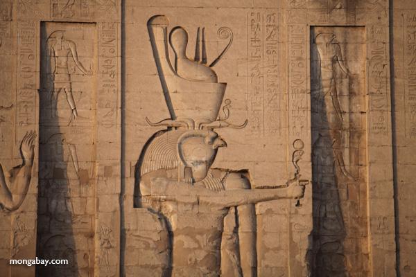 Temple of Kom Ombo [egypt_0491]