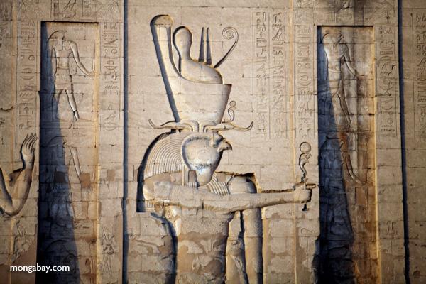 Temple of Kom Ombo [egypt_0492]