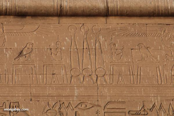 Temple of Kom Ombo [egypt_0495]