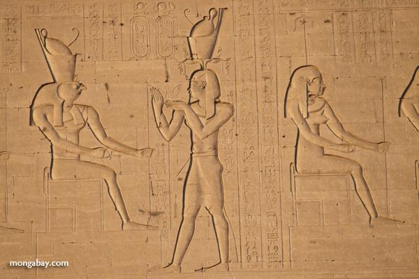 Temple of Kom Ombo [egypt_0499]