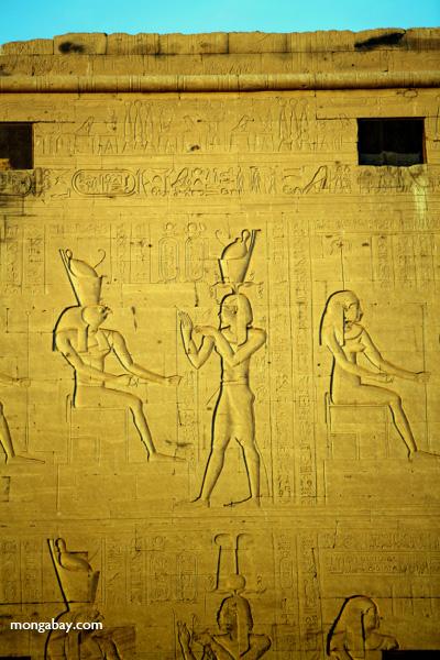 Temple of Kom Ombo [egypt_0505]