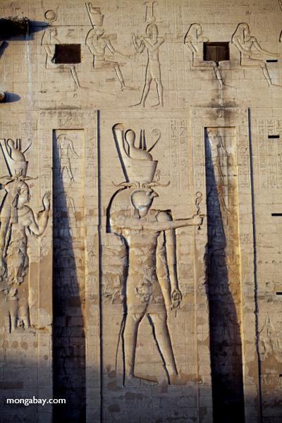 Temple of Kom Ombo [egypt_0509]