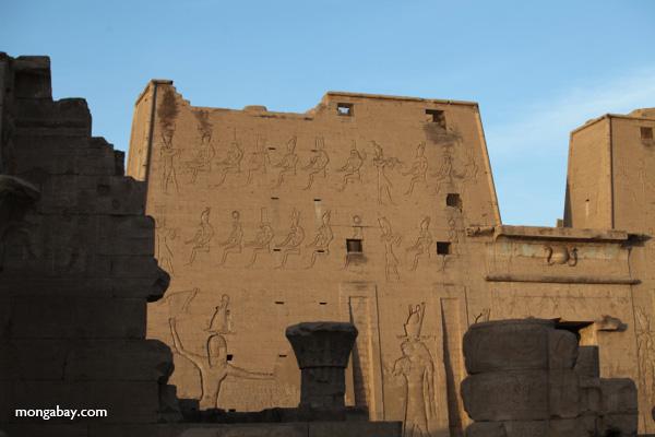 Temple of Kom Ombo [egypt_0513]