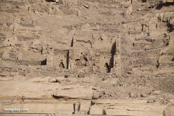 Temple of Kom Ombo [egypt_0514]