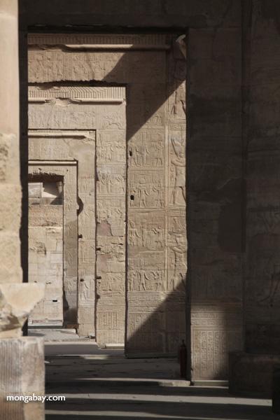 Temple of Kom Ombo [egypt_0519]
