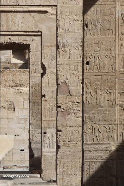 Temple of Kom Ombo [egypt_0520]