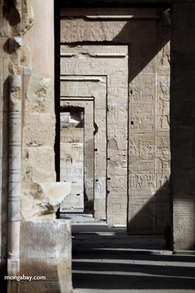 Temple of Kom Ombo [egypt_0521]