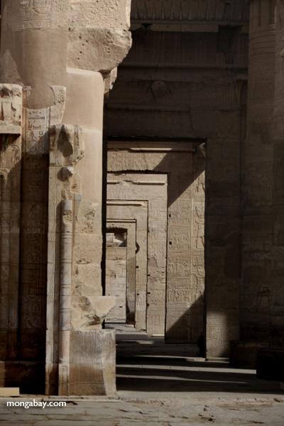 Temple of Kom Ombo [egypt_0523]