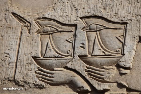 Temple of Kom Ombo [egypt_0529]