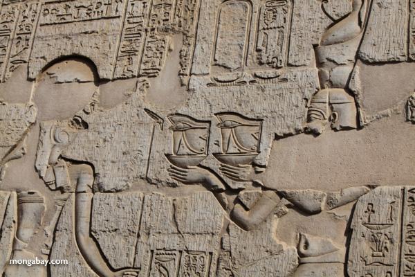 Temple of Kom Ombo [egypt_0530]