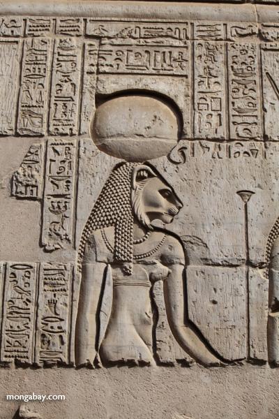 Temple of Kom Ombo [egypt_0531]