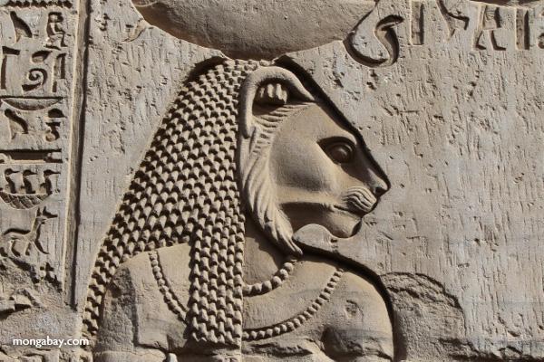 Temple of Kom Ombo [egypt_0532]