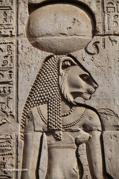 Temple of Kom Ombo [egypt_0536]