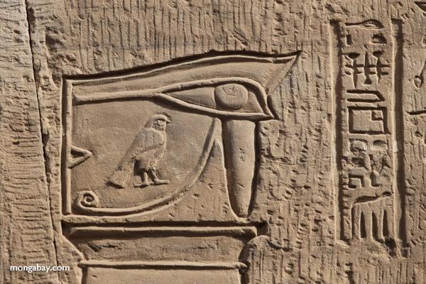 Temple of Kom Ombo [egypt_0550]