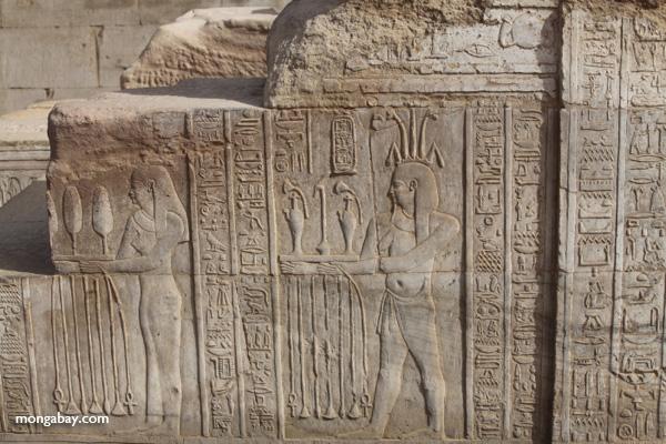 Temple of Kom Ombo [egypt_0557]