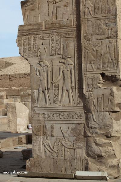 Temple of Kom Ombo [egypt_0560]
