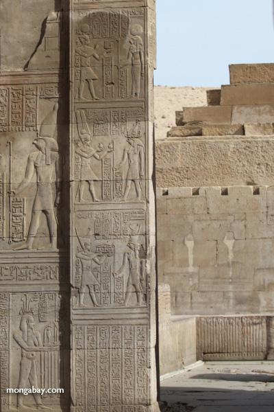 Temple of Kom Ombo [egypt_0561]