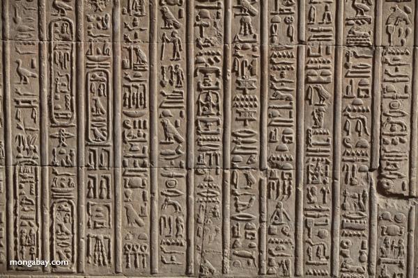 Temple of Kom Ombo [egypt_0565]