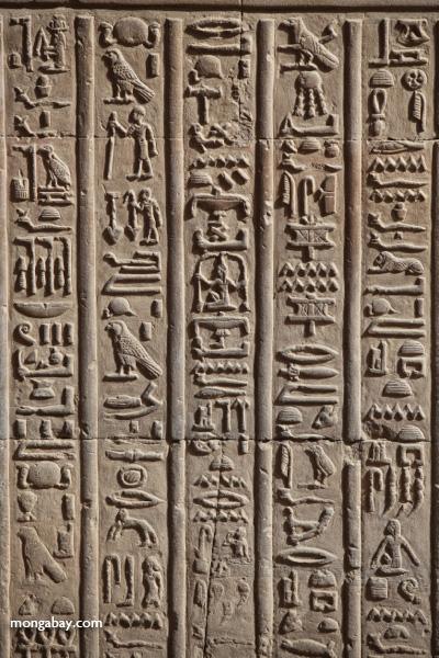 Temple of Kom Ombo [egypt_0566]