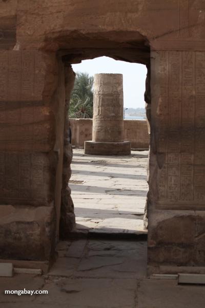 Temple of Kom Ombo [egypt_0569]