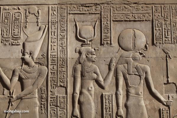 Temple of Kom Ombo [egypt_0570]