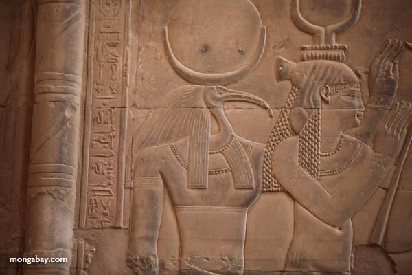 Temple of Kom Ombo [egypt_0572]