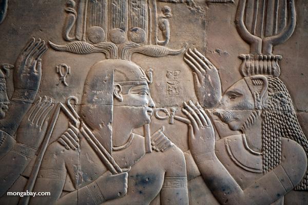 Temple of Kom Ombo [egypt_0573]