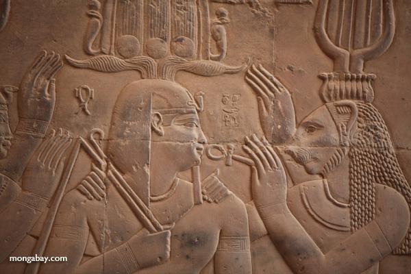 Temple of Kom Ombo [egypt_0574]