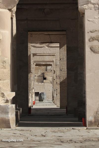 Temple of Kom Ombo [egypt_0576]
