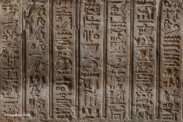Temple of Kom Ombo [egypt_0579]