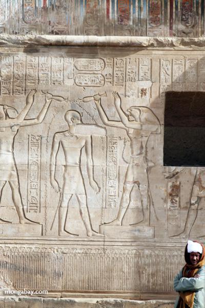 Temple of Kom Ombo [egypt_0581]