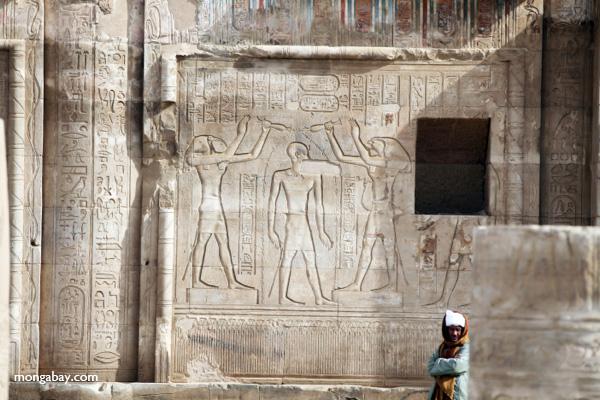 Temple of Kom Ombo [egypt_0582]