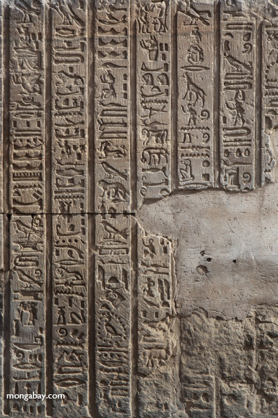 Temple of Kom Ombo [egypt_0584]