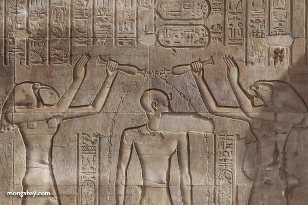 Temple of Kom Ombo [egypt_0589]