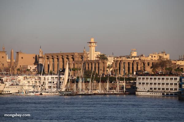 Luxor [egypt_0598]